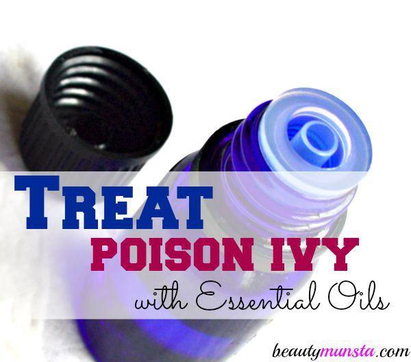 ¡Calma y calma las erupciones de veneno y picazón. Use aceites esenciales! 7 Mejores aceites esenciales para tratar el venerable Sumcac ...