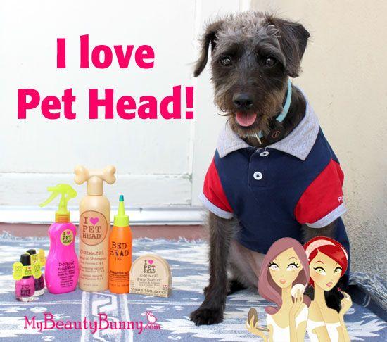 Pet Head critique