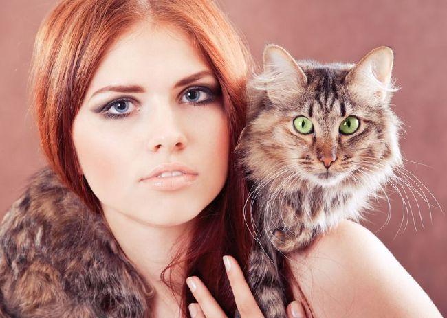 comment faire cat eye-liner pour les yeux