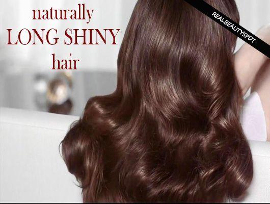 Fotografía - Traitements naturels pour longs cheveux brillants