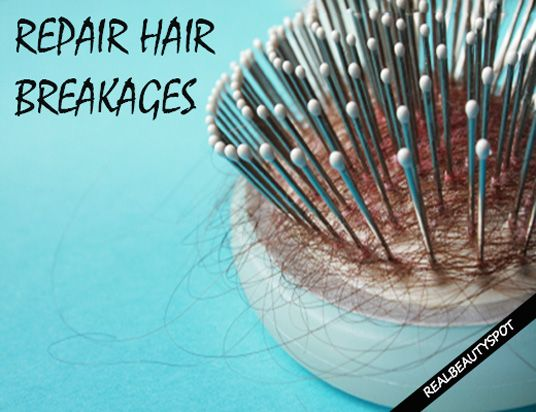 Fotografía - Réparation cheveux bris à la maison