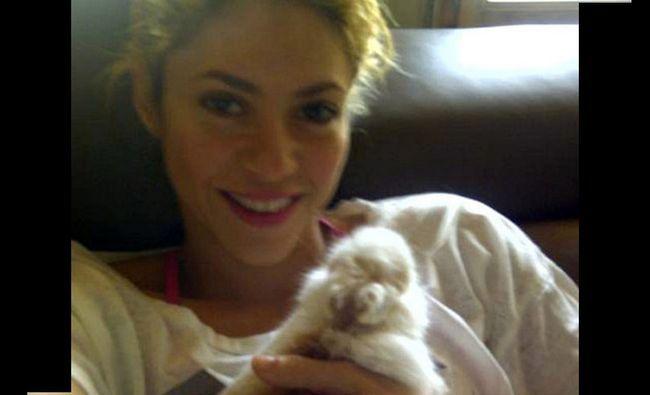 Fotografía - Shakira sans maquillage