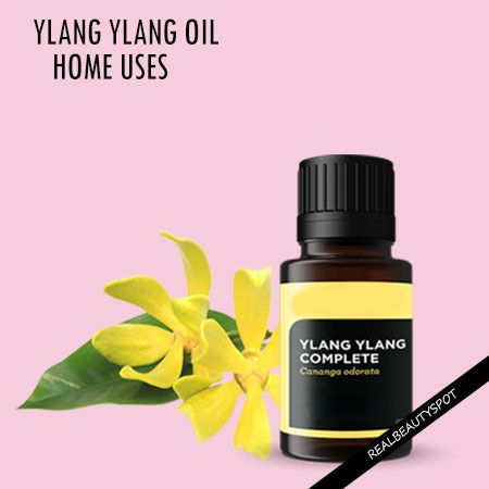 Fotografía - Façons d'utiliser l'huile essentielle de ylang-ylang dans votre maison