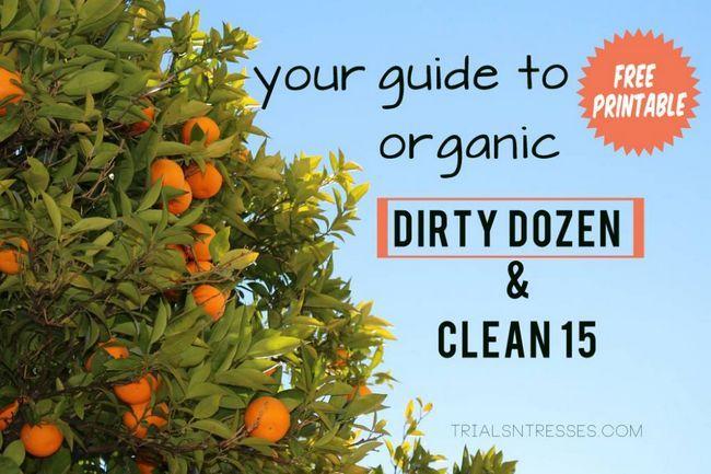 Fotografía - Votre guide à l'agriculture biologique: Le Dirty Dozen & Clean 15 (imprimable gratuit)